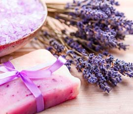 essential oils and aromatherapy | lorann oils